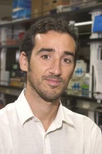 Bioengineers at UC Santa Barbara and University of Rome Tor Vergata have designed faster and cheaper medical diagnostic tests