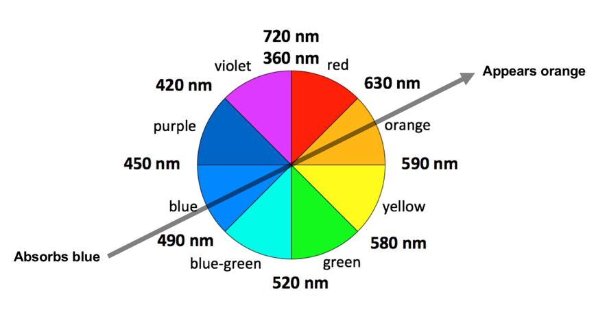 200319_Alba_colors3